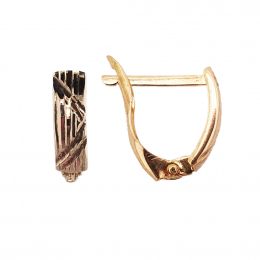 Citigems 916 Elegant Hoop Earrings